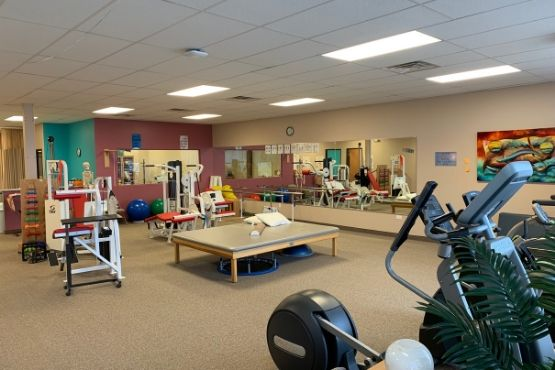 Macomb Physical Therapy Clinic - Neil King Physical Therapy